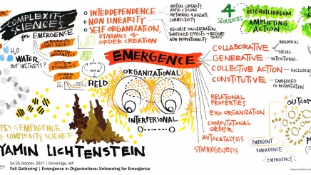 Leadership of emergence: How to generate new order?